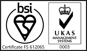 BSI Logo 2020